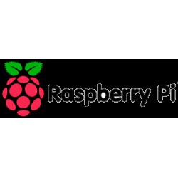 Rasp Berry PI